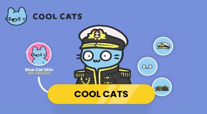 【miinのNFT辞典】COOL CATSからみるNFTとマーケティングについて