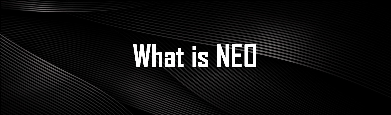 about neo blockchain