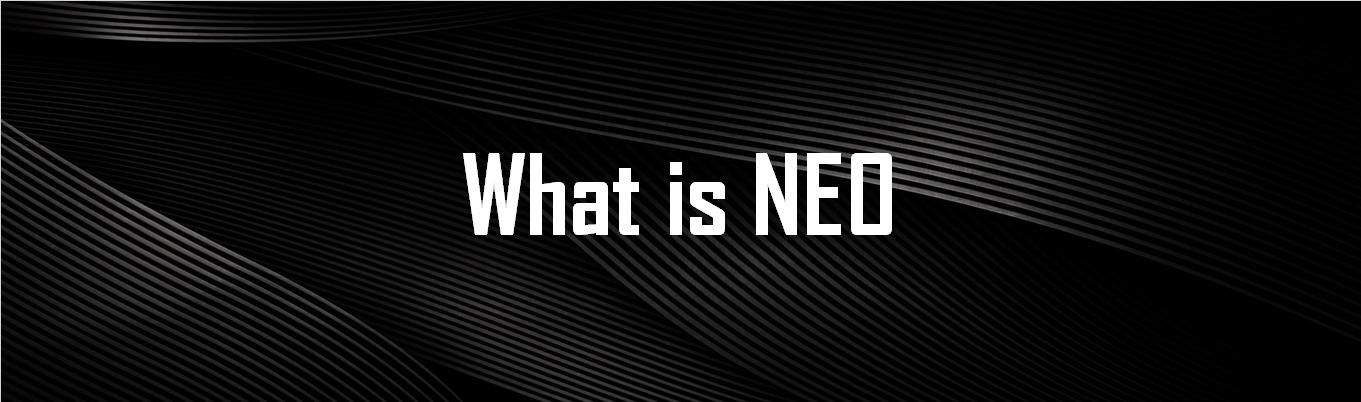 about neo blockchain